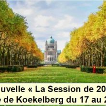 ANNULATION DE LA SESSION KOEKELBERG juillet 2020 !